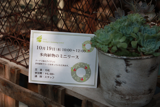 20110724g.jpg
