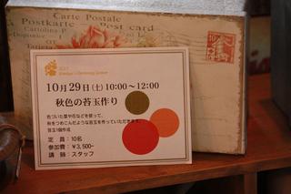 20110724h.jpg