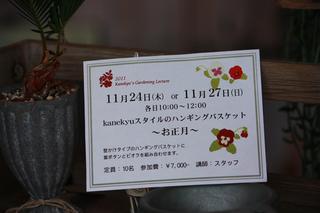 20110724l.jpg