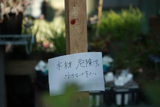 20140817d.jpg