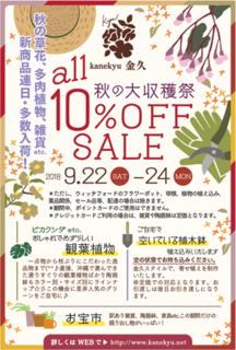 kanekyu2018収穫祭.png